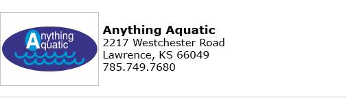 Anything Aqua