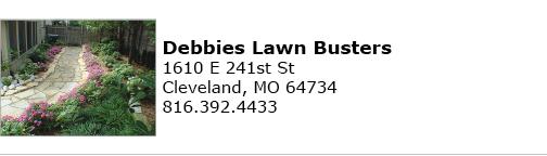 Debbies Lawn Busters logo
