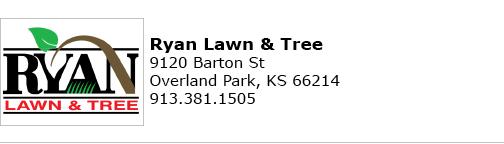 Ryan Lawn