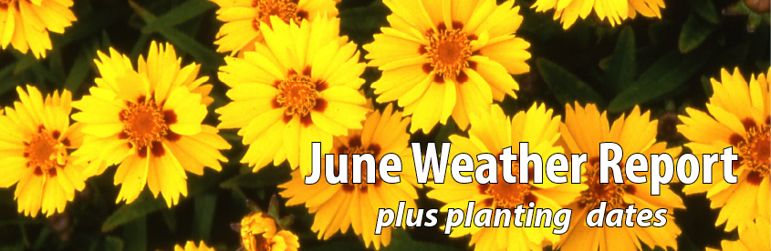 June Weather Report