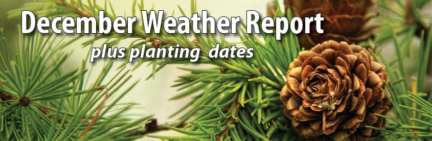 dec-weather-report