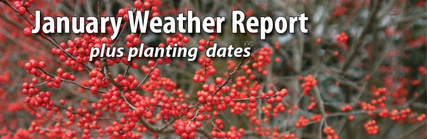 jan-weather-report