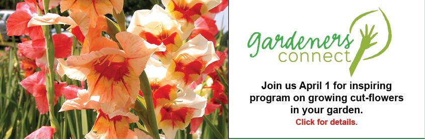 Gardeners Connect