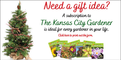KCG gift idea